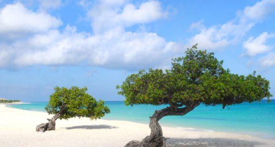 De stranden van Aruba